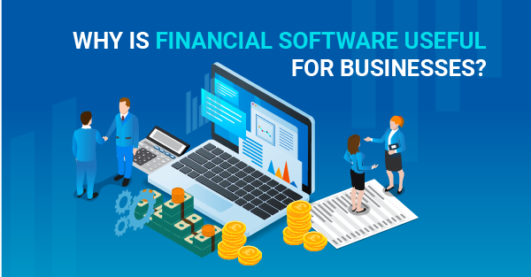 Why is financial software useful for businesses?