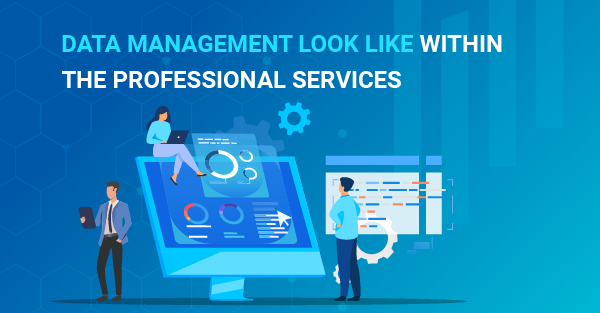 What does data management look like within the Professional Services sector?